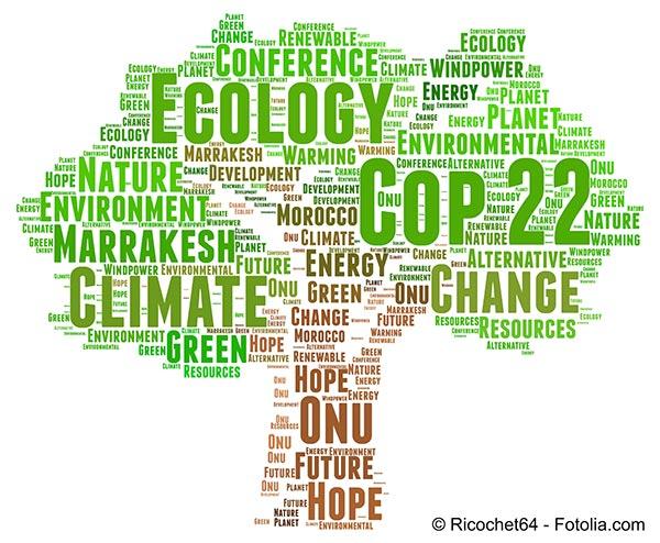 Où se déroulera le prochain sommet mondial de l'environnement ?