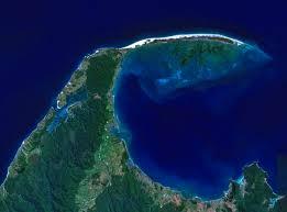 Quels animaux se sont échoué sur les côtes de la Nouvelle Zélande ?