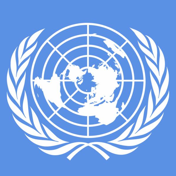 L'ONU a...