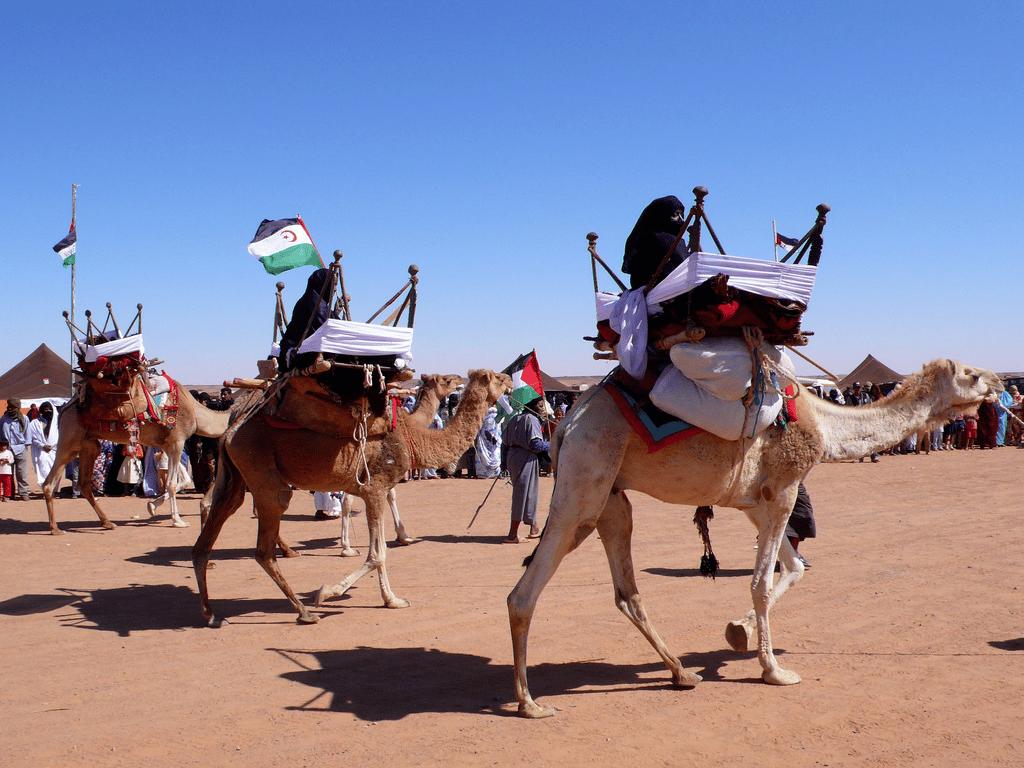 Quand une nouvelle table ronde au sujet du Sahara occidental devrait-elle avoir lieu ?
