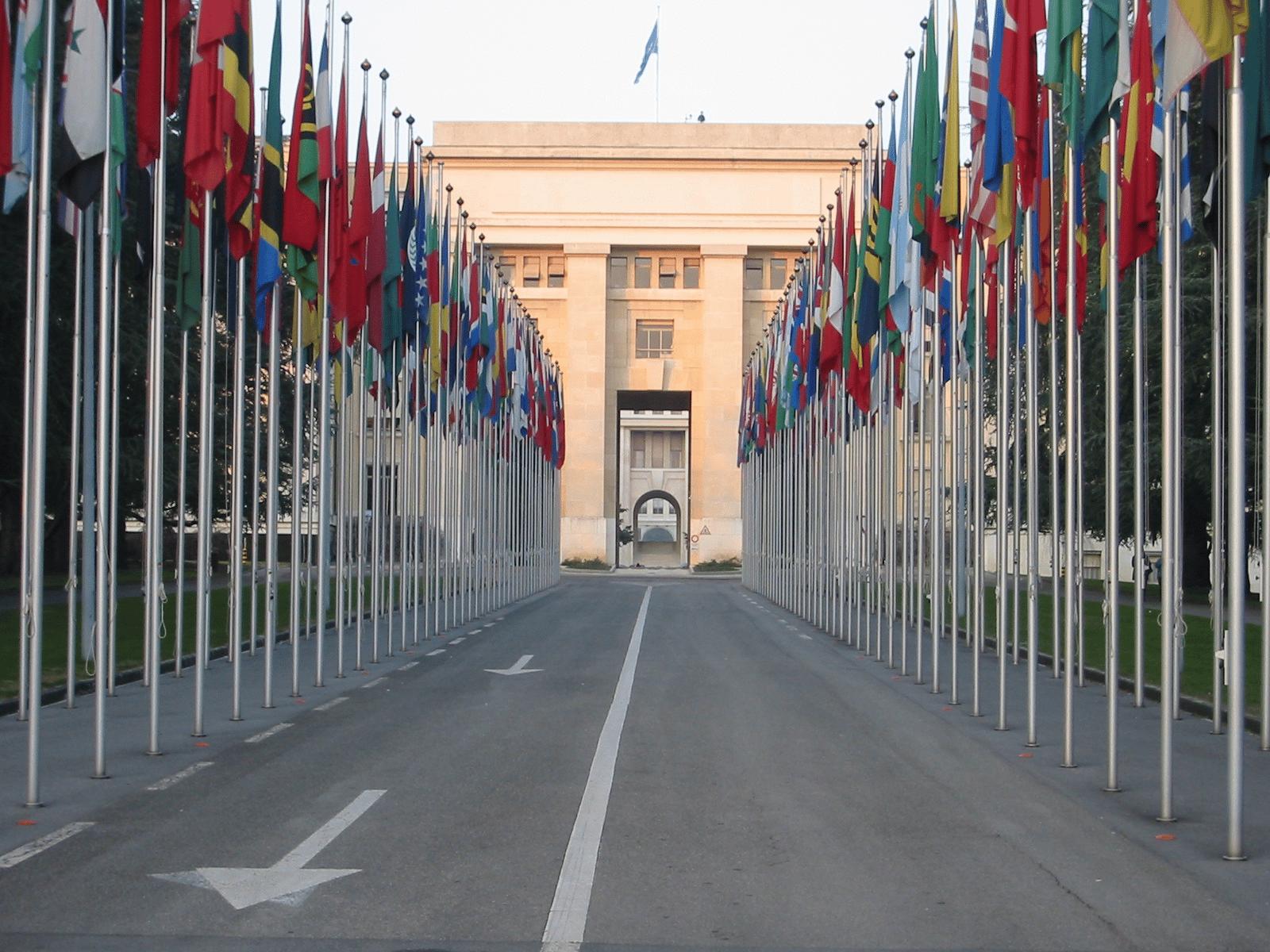L'ONU a appelé à un soutien crucial pour :
