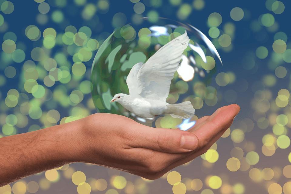 La ... édition du Forum de Paris pour la paix a eu lieu cette semaine.